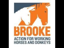 Brooke Action for Working Horses and Donkeys logo